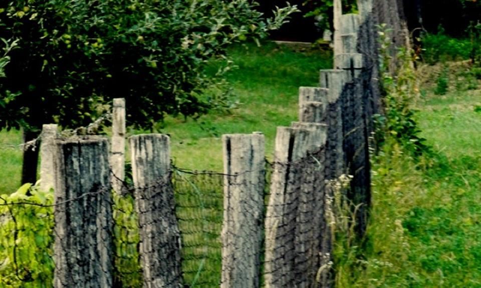 Ľudia spoza plota