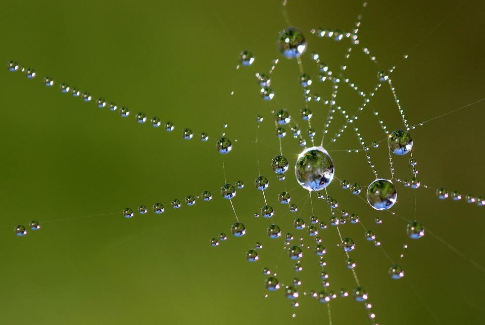 Lekcie upradené z pavučiny